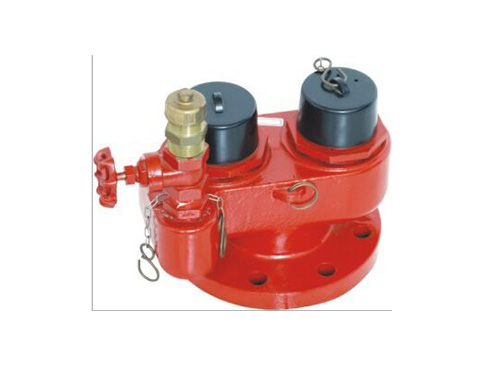 Breeching Inlet Fire Hydrant Valve